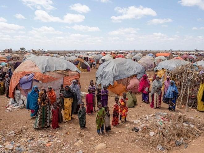 Somalis famine