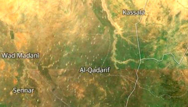 Sudan Arrests TPLF Junta Militia Leader